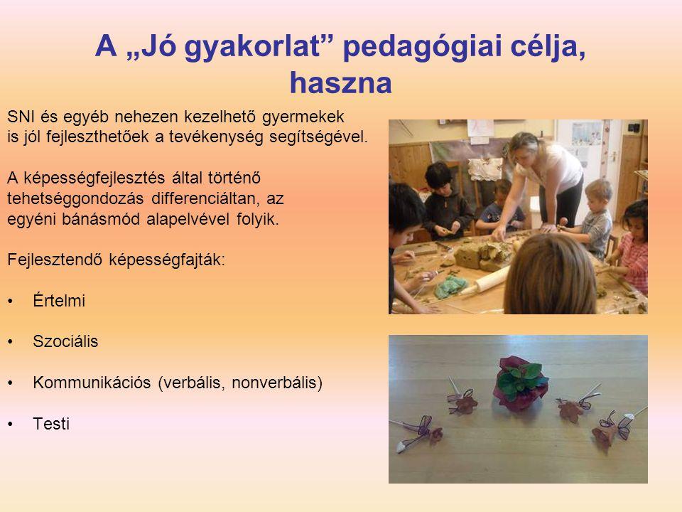 "A ""Jó gyakorlat pedagógiai célja, haszna"