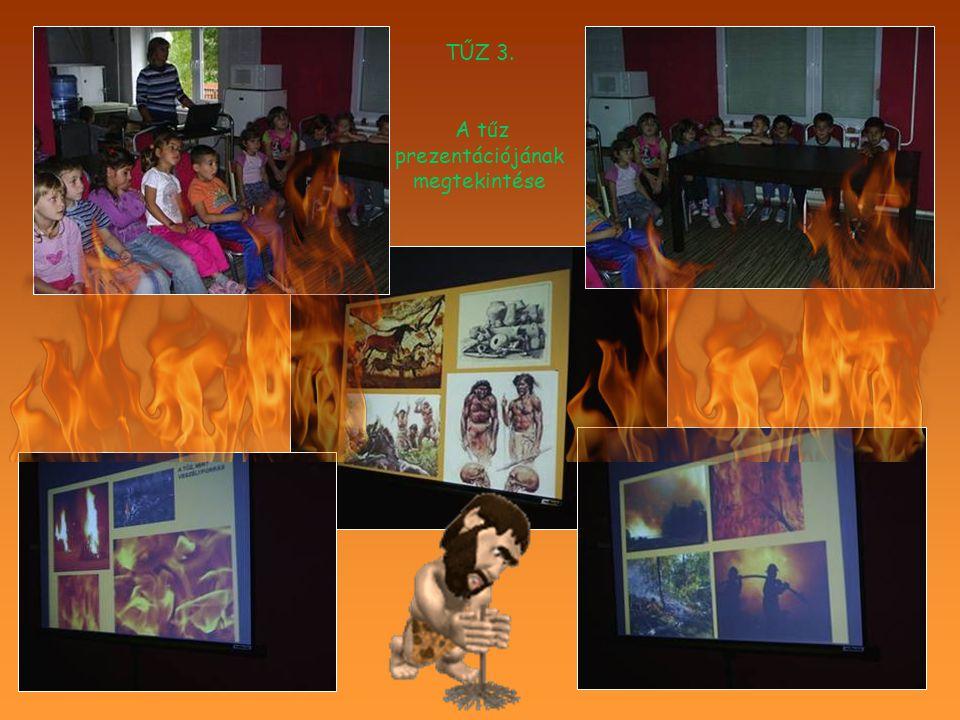 A tűz prezentációjának megtekintése