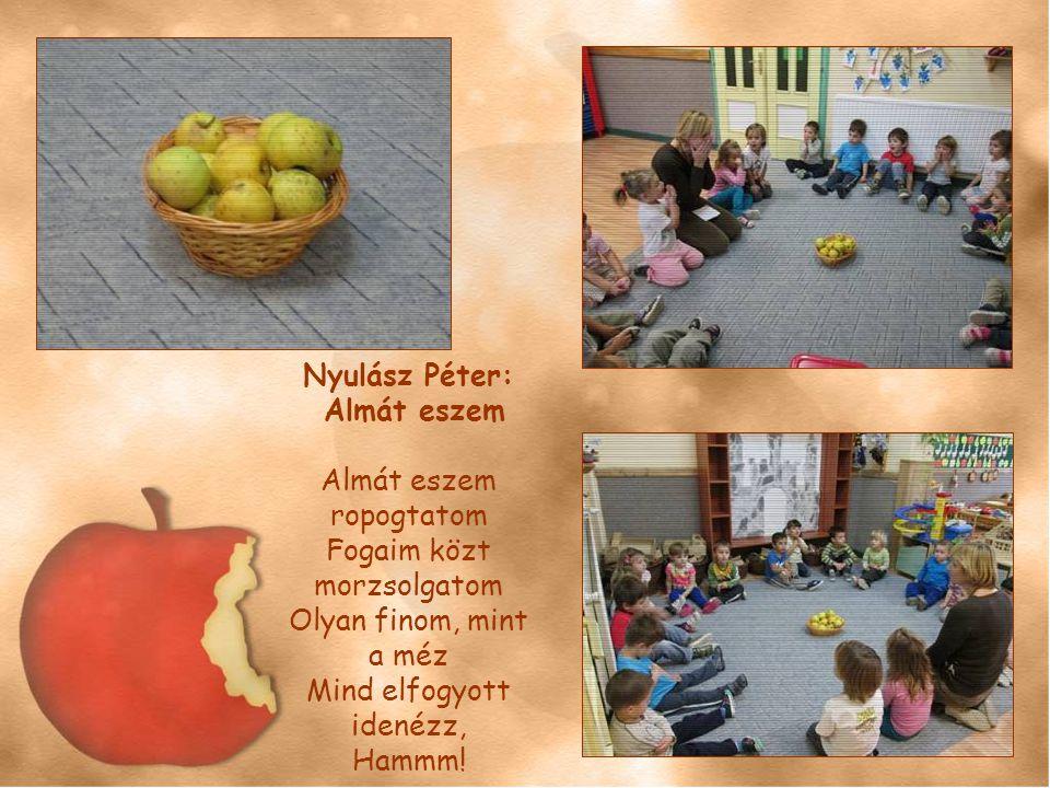Nyulász Péter: Almát eszem.