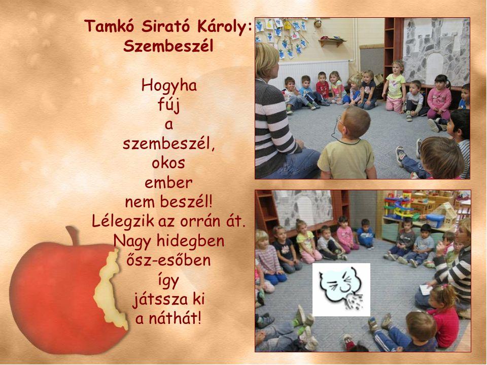 Tamkó Sirató Károly: Szembeszél