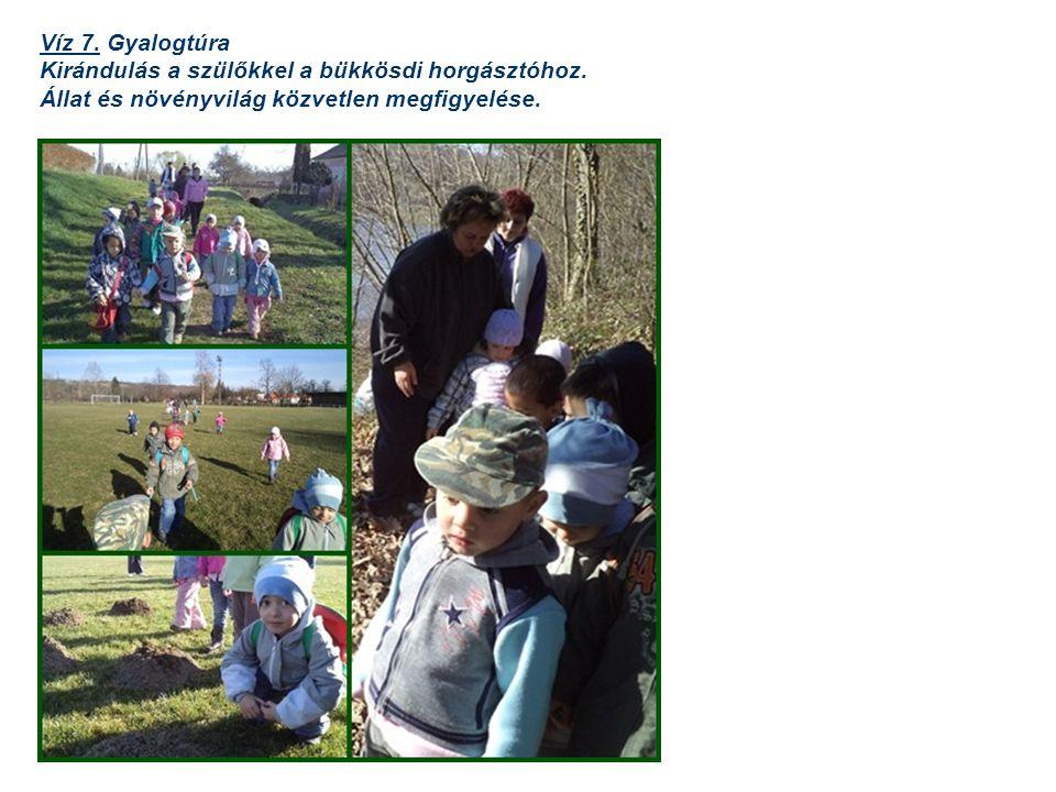 Víz 7. Gyalogtúra Kirándulás a szülőkkel a bükkösdi horgásztóhoz.