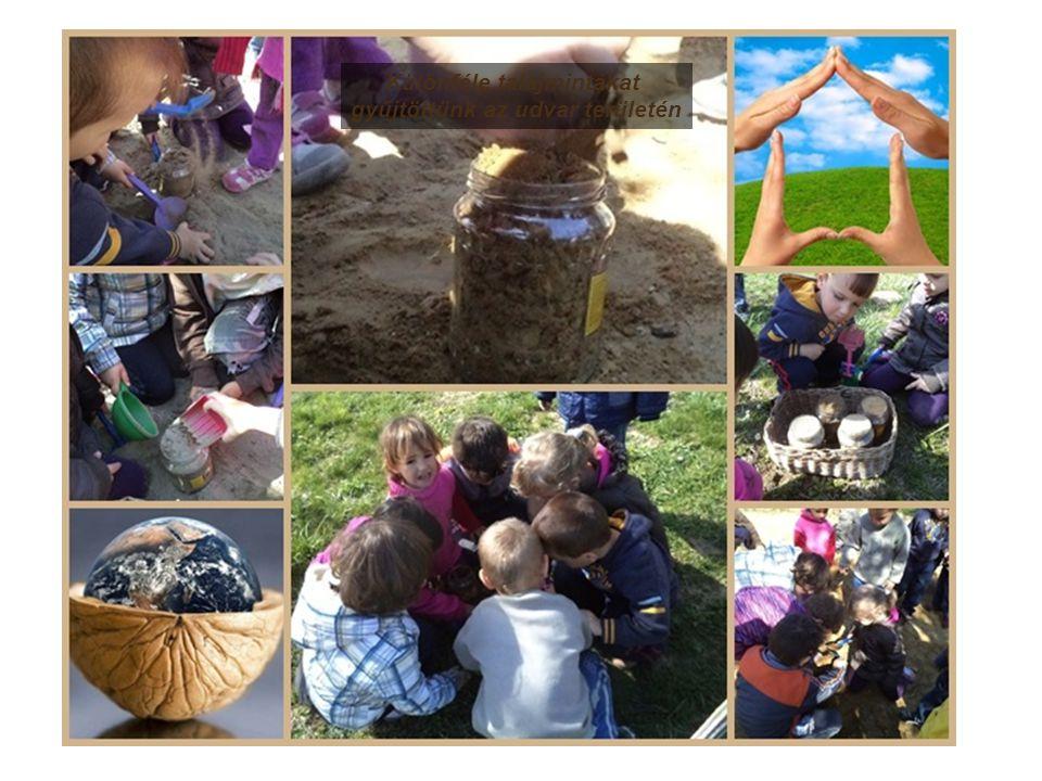 Különféle talajmintákat gyűjtöttünk az udvar területén