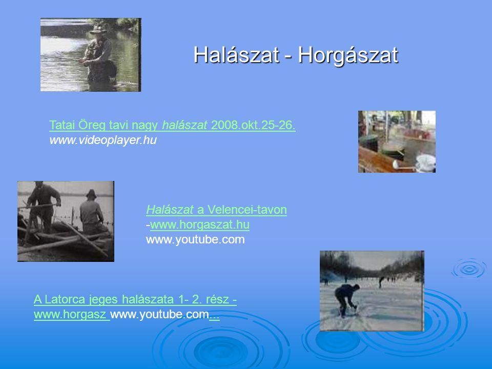 Halászat - Horgászat Tatai Öreg tavi nagy halászat 2008.okt.25-26. www.videoplayer.hu.