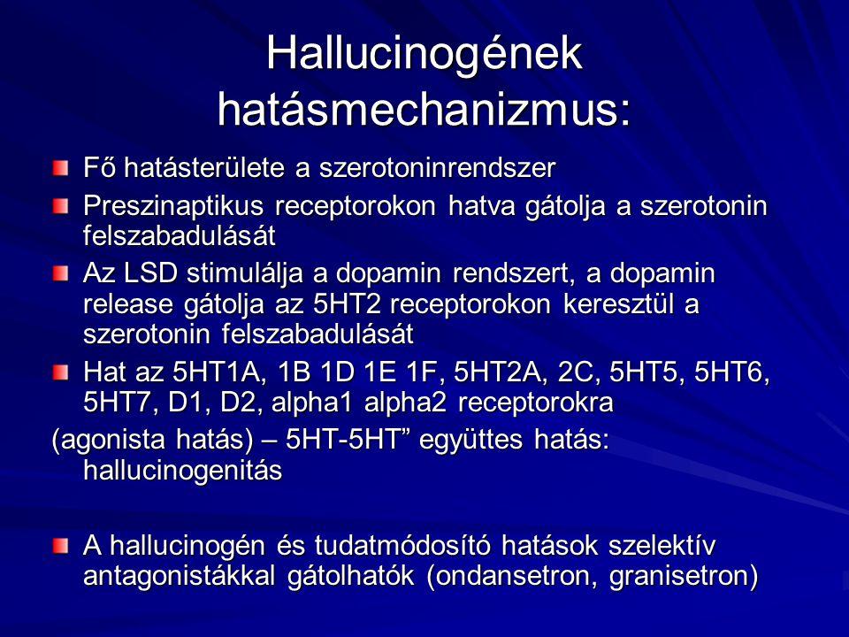 Hallucinogének hatásmechanizmus: