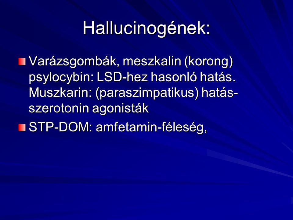 Hallucinogének: Varázsgombák, meszkalin (korong) psylocybin: LSD-hez hasonló hatás. Muszkarin: (paraszimpatikus) hatás-szerotonin agonisták.