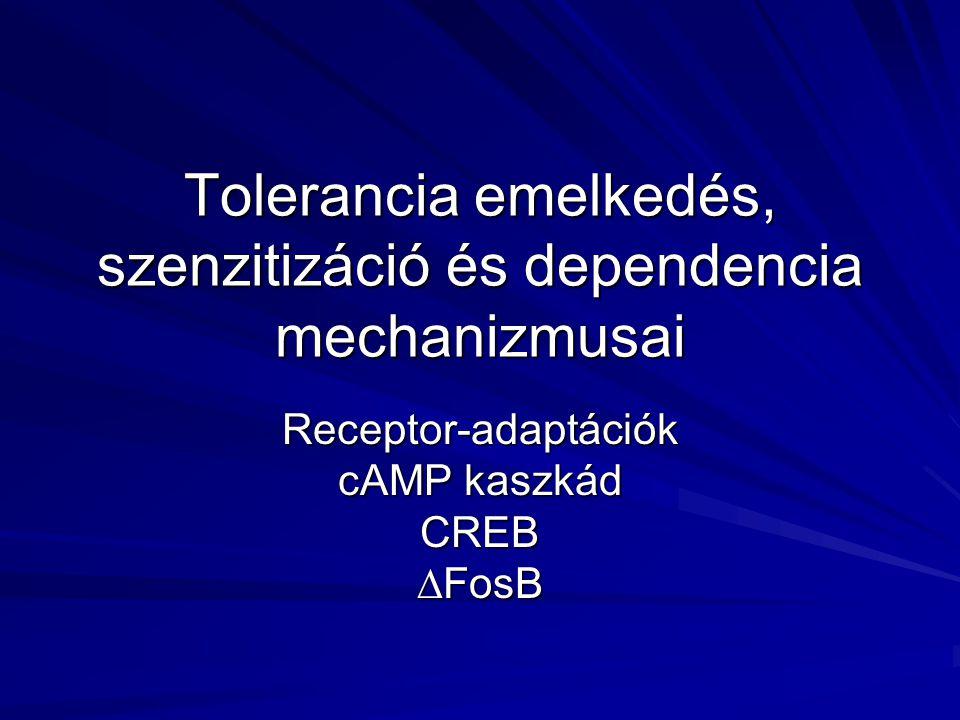 Tolerancia emelkedés, szenzitizáció és dependencia mechanizmusai