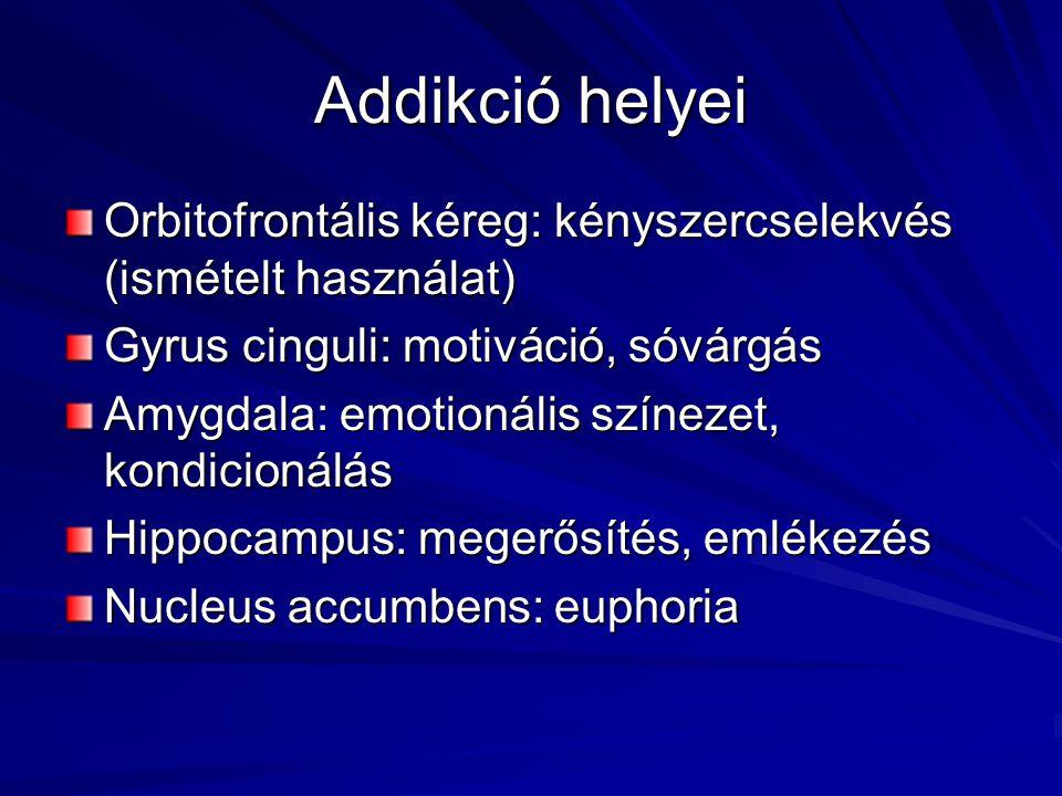 Addikció helyei Orbitofrontális kéreg: kényszercselekvés (ismételt használat) Gyrus cinguli: motiváció, sóvárgás.