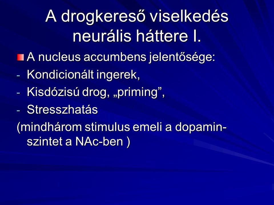 A drogkereső viselkedés neurális háttere I.