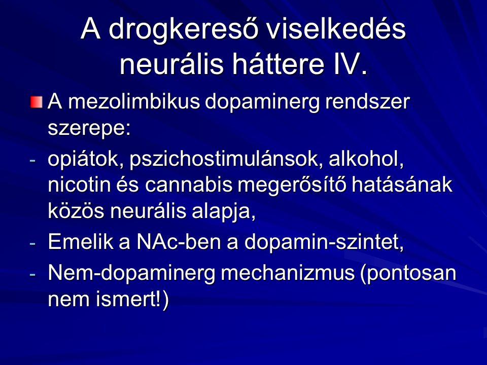 A drogkereső viselkedés neurális háttere IV.