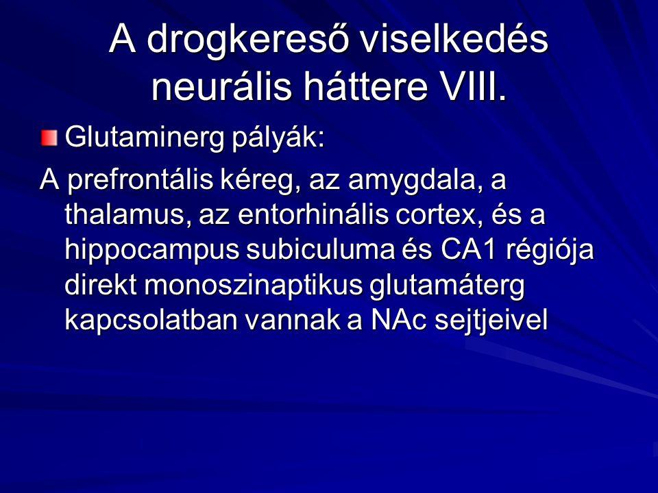 A drogkereső viselkedés neurális háttere VIII.