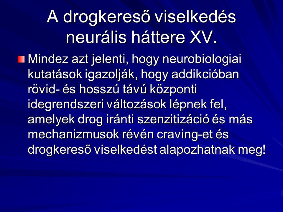 A drogkereső viselkedés neurális háttere XV.
