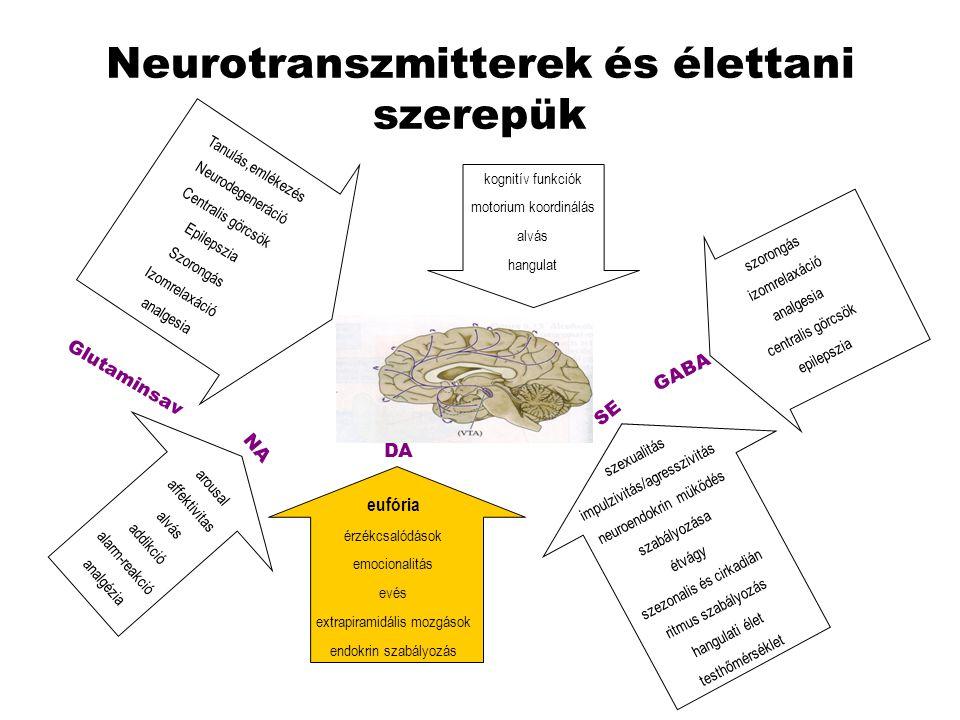 Neurotranszmitterek és élettani szerepük
