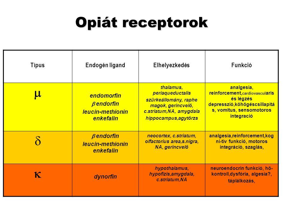 Opiát receptorok m d k Típus Endogén ligand Elhelyezkedés Funkció