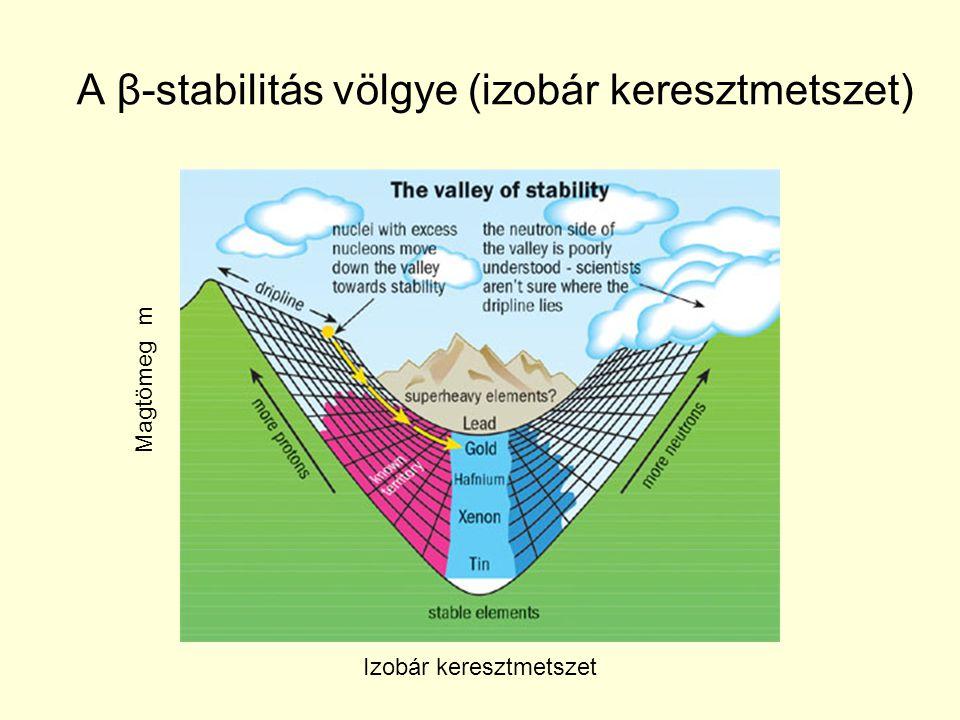 A β-stabilitás völgye (izobár keresztmetszet)