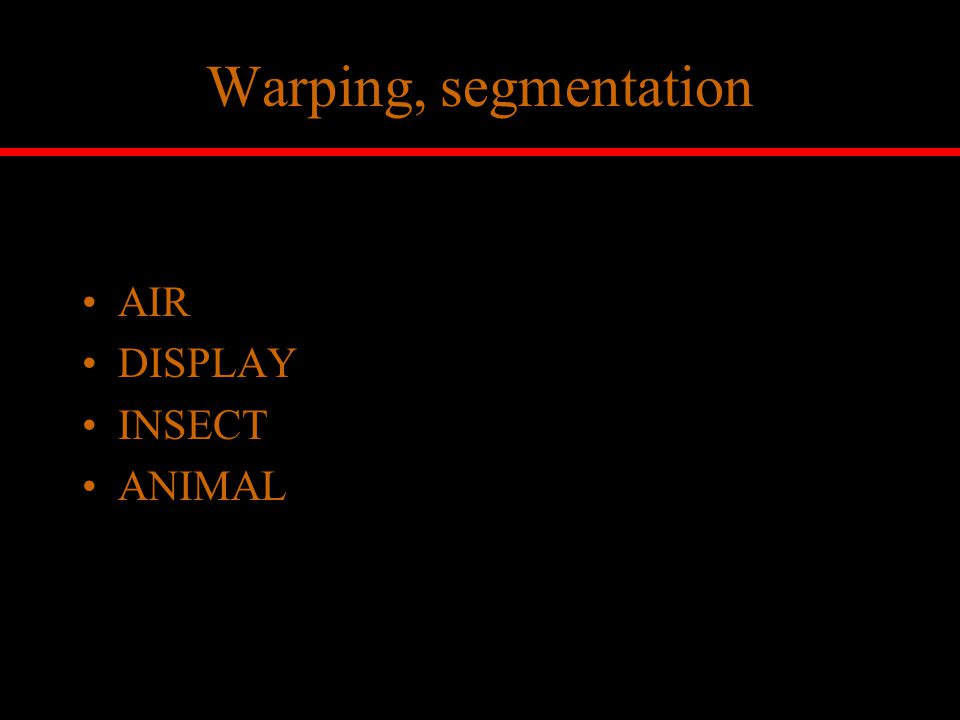 Warping, segmentation AIR DISPLAY INSECT ANIMAL