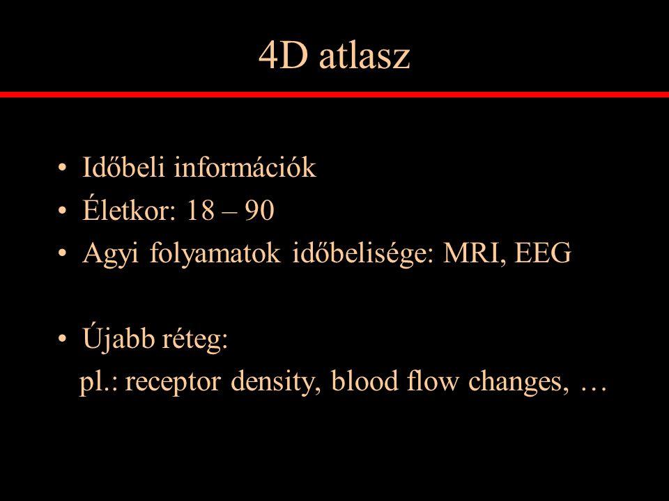 4D atlasz Időbeli információk Életkor: 18 – 90