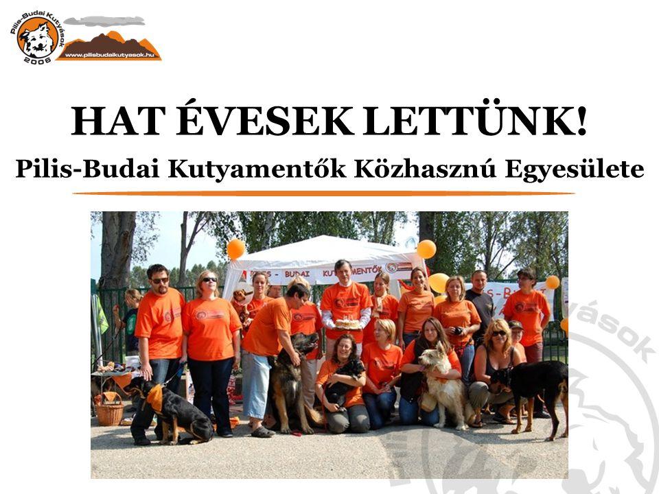 Pilis-Budai Kutyamentők Közhasznú Egyesülete
