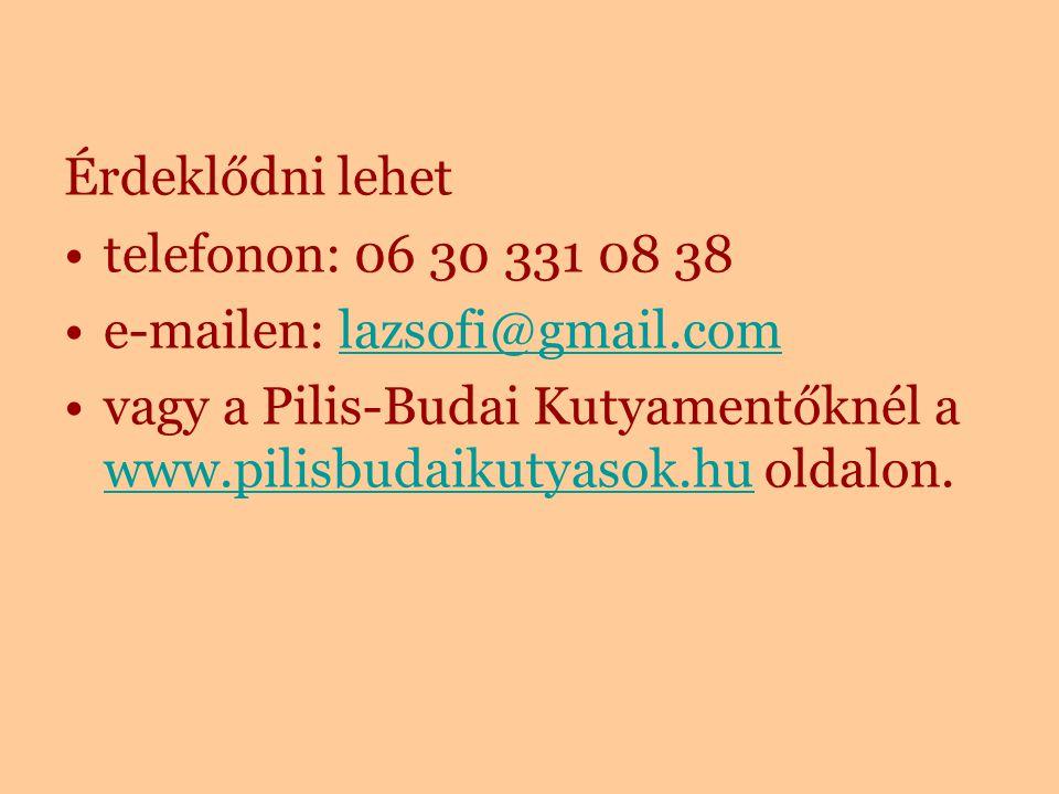 Érdeklődni lehet telefonon: 06 30 331 08 38. e-mailen: lazsofi@gmail.com.