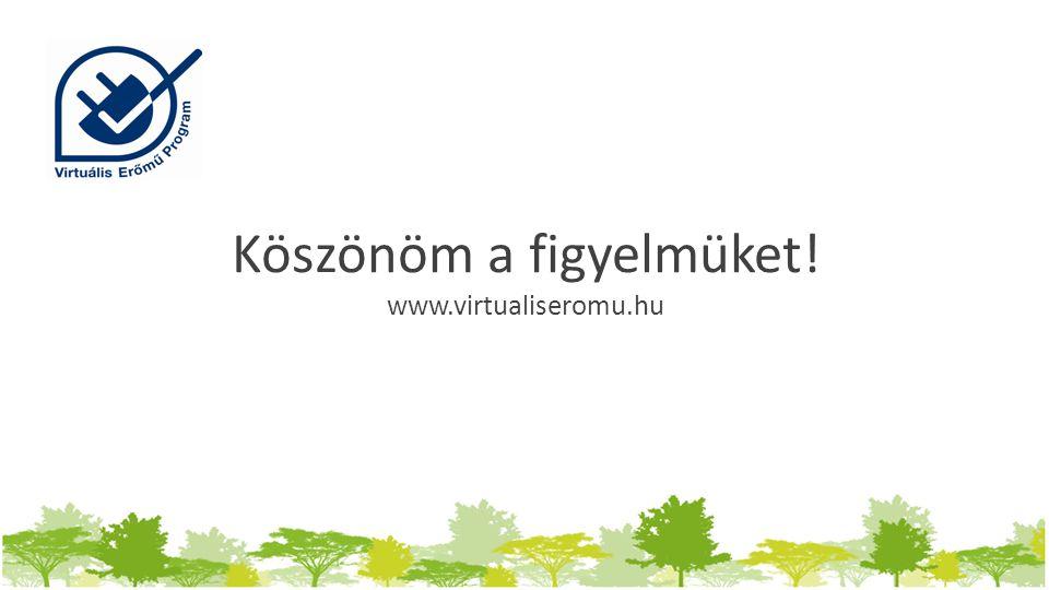Köszönöm a figyelmüket! www.virtualiseromu.hu