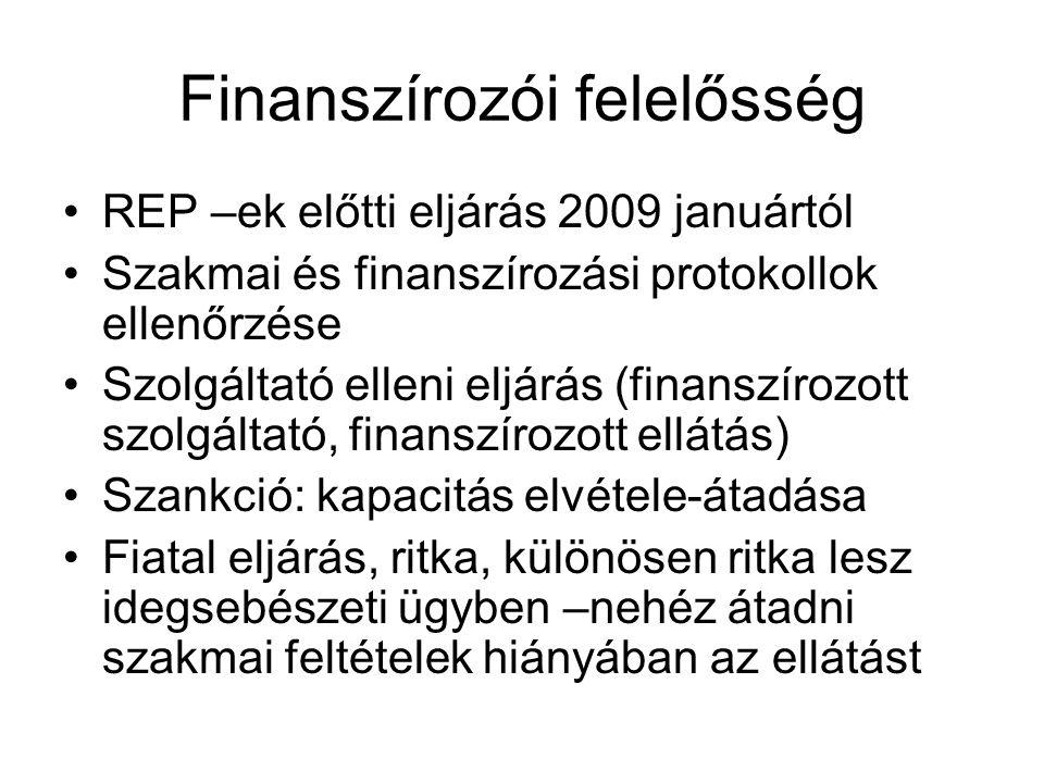 Finanszírozói felelősség