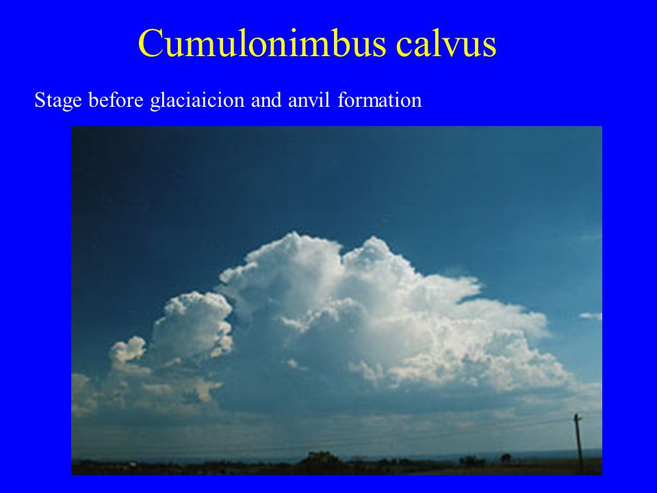 Cumulonimbus calvus Stage before glaciaicion and anvil formation