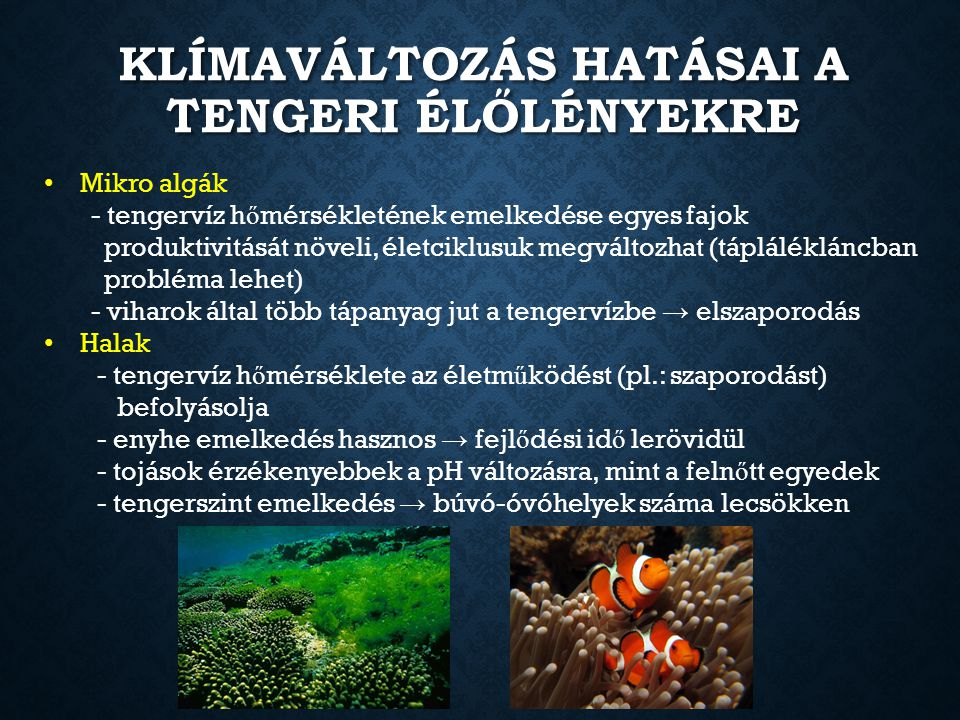 Klímaváltozás hatásai a tengeri élőlényekre
