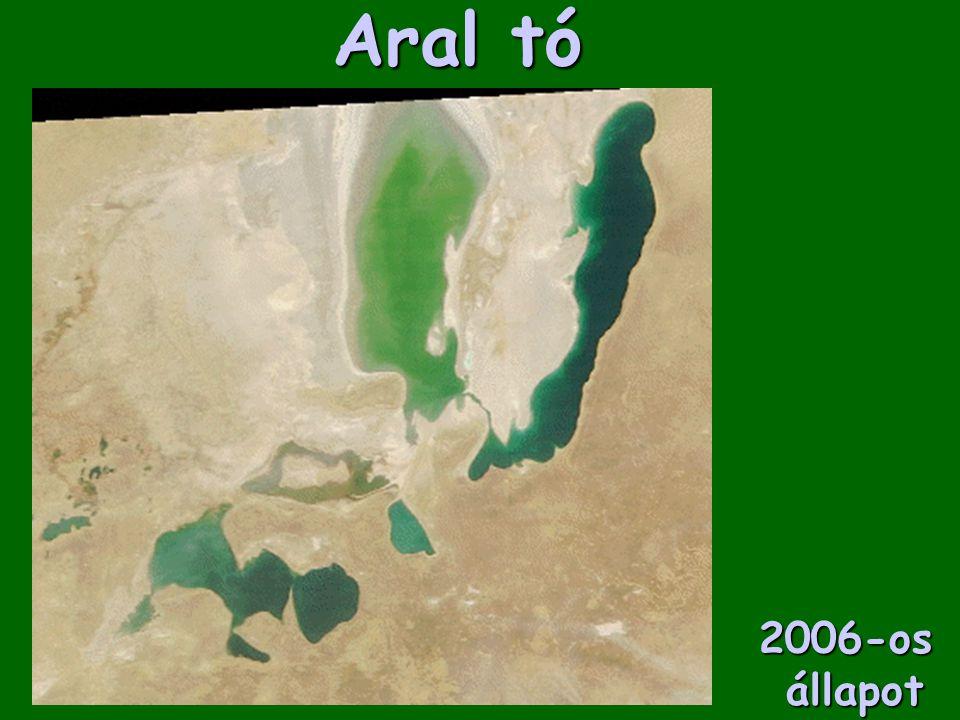 Aral tó 2006-os állapot