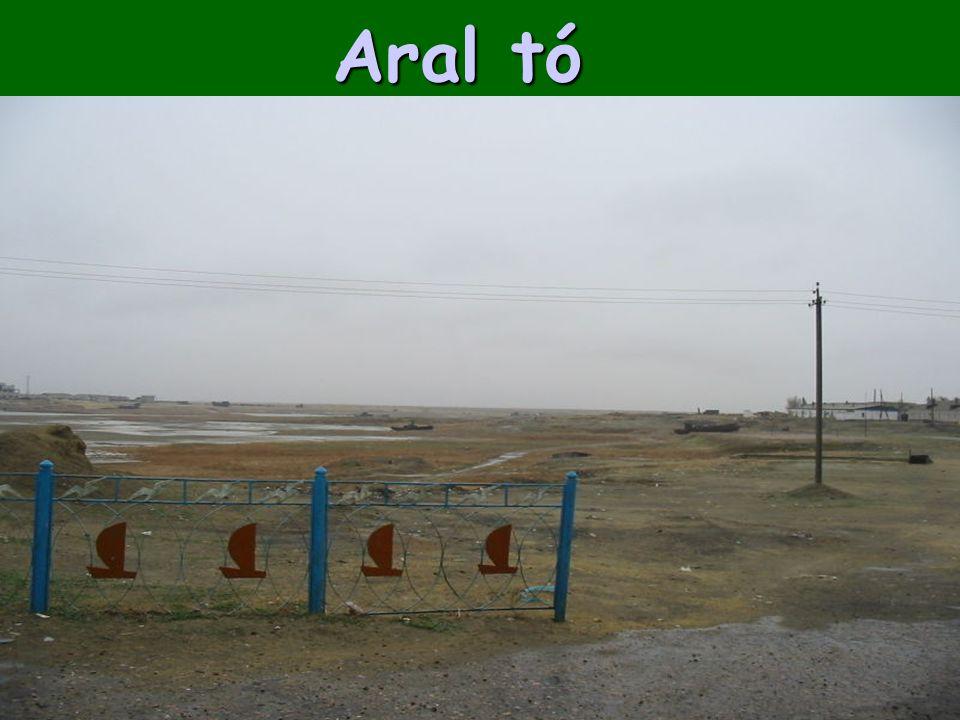 Aral tó