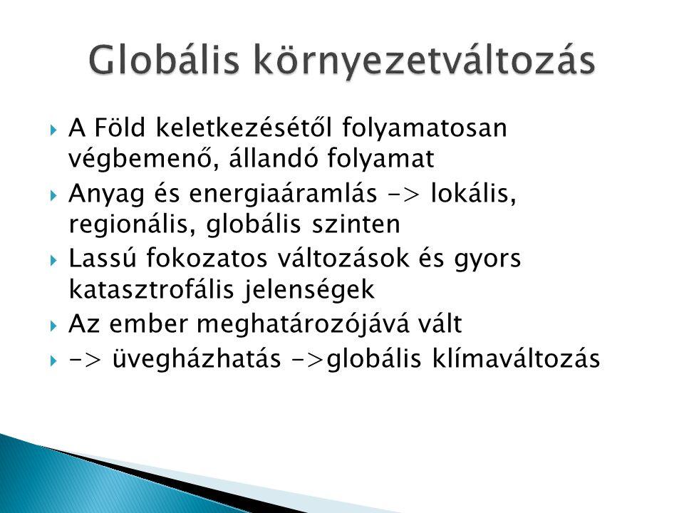 Globális környezetváltozás