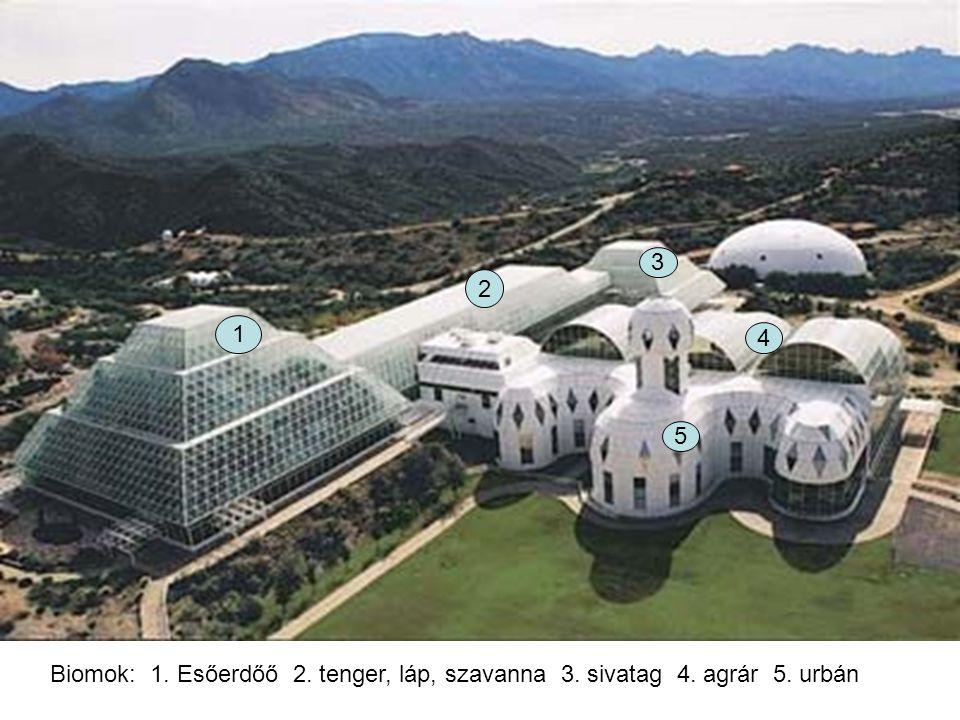 3 2 1 4 5 Biomok: 1. Esőerdőő 2. tenger, láp, szavanna 3. sivatag 4. agrár 5. urbán