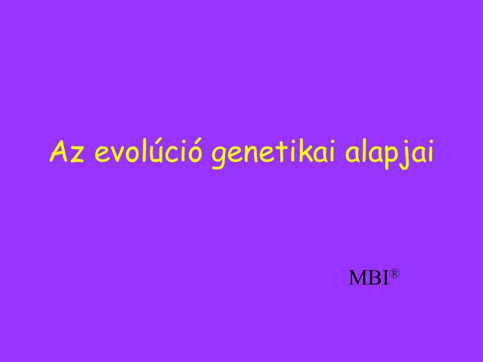 Az evolúció genetikai alapjai