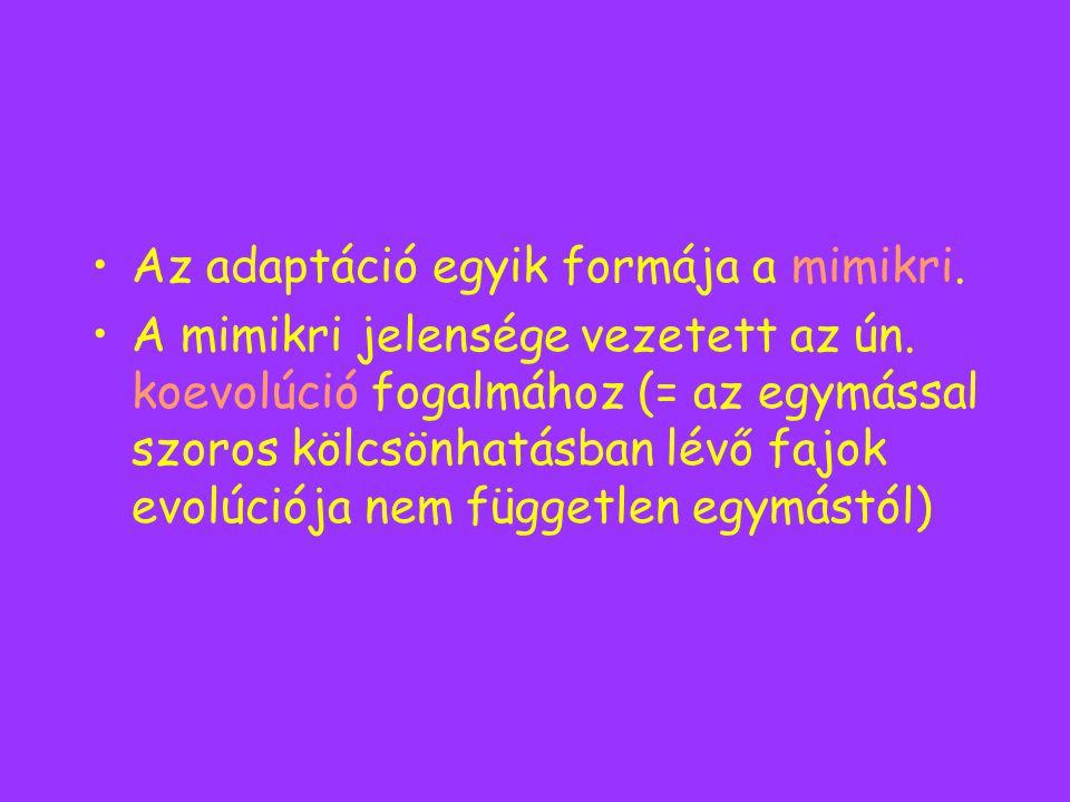 Az adaptáció egyik formája a mimikri.