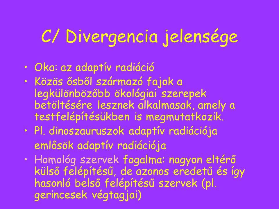 C/ Divergencia jelensége