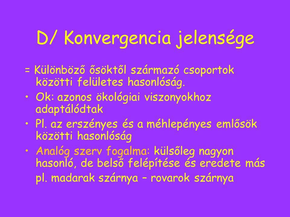D/ Konvergencia jelensége