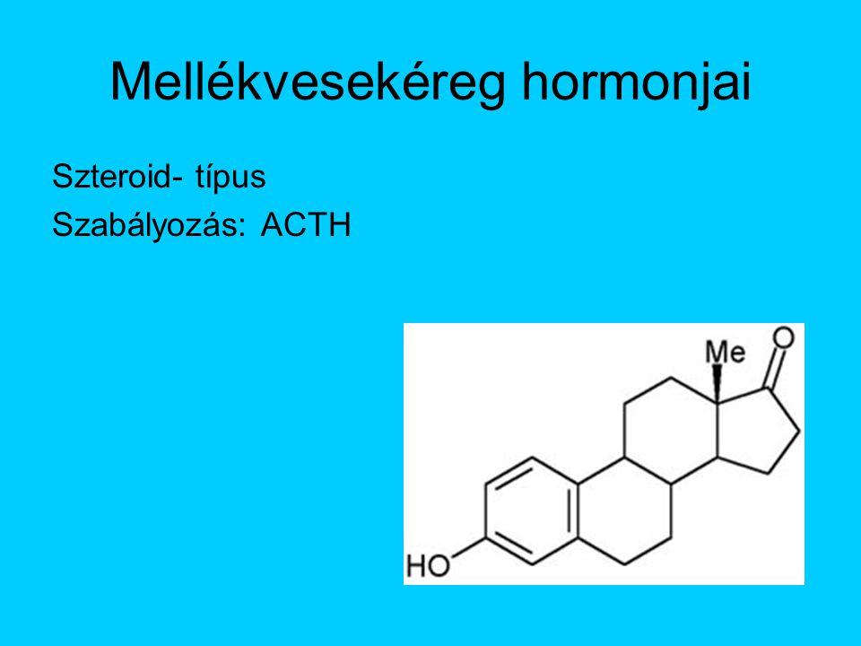 Mellékvesekéreg hormonjai