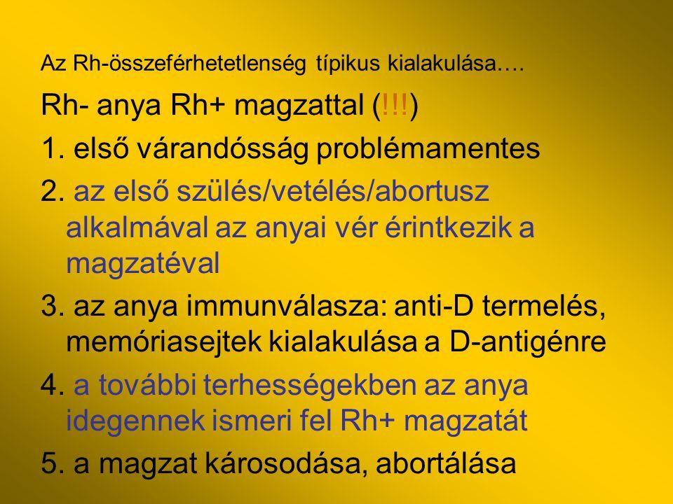 Az Rh-összeférhetetlenség típikus kialakulása….