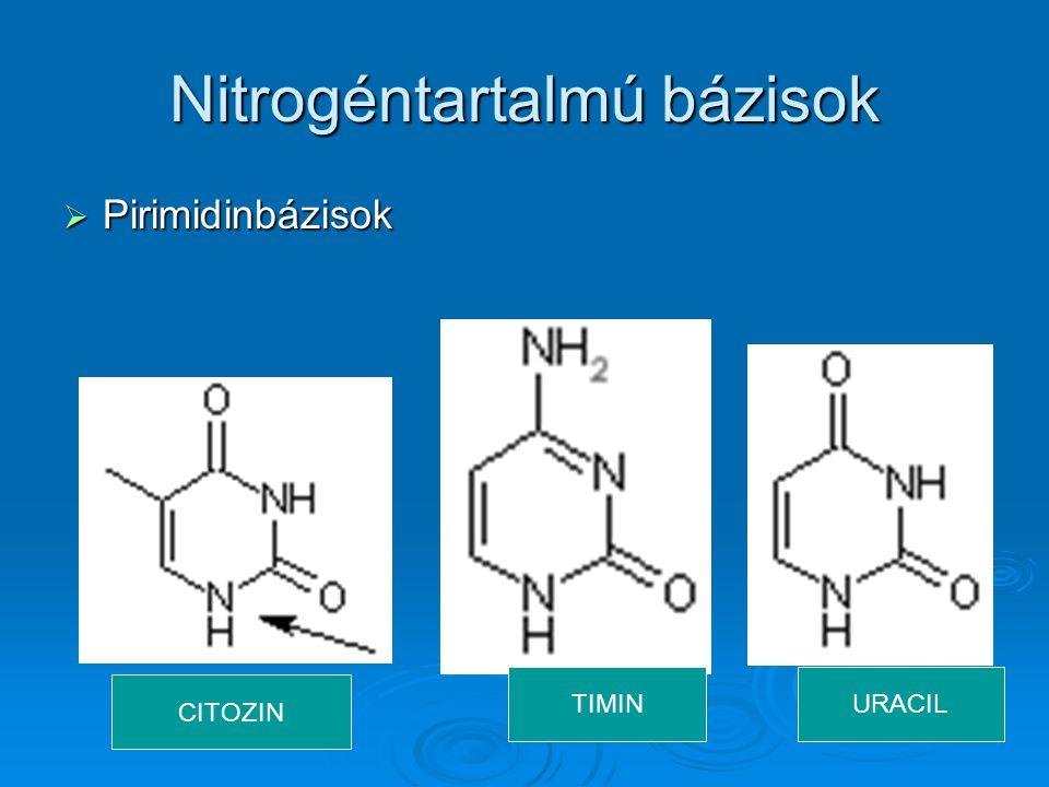 Nitrogéntartalmú bázisok