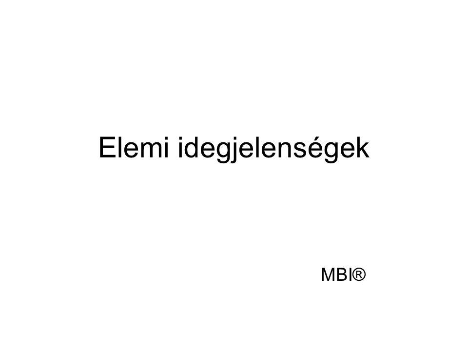 Elemi idegjelenségek MBI®