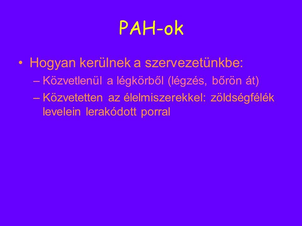 PAH-ok Hogyan kerülnek a szervezetünkbe: