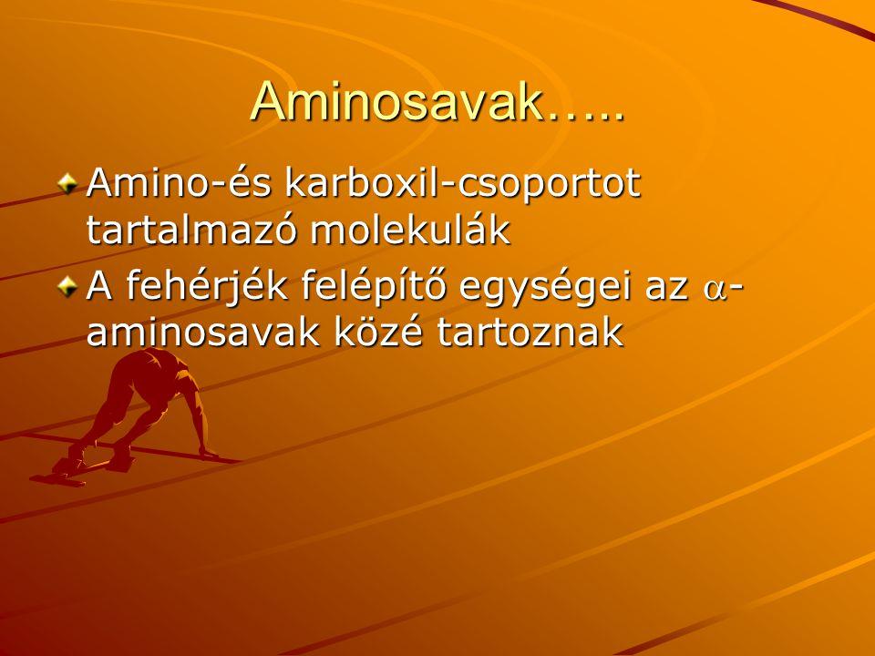 Aminosavak….. Amino-és karboxil-csoportot tartalmazó molekulák