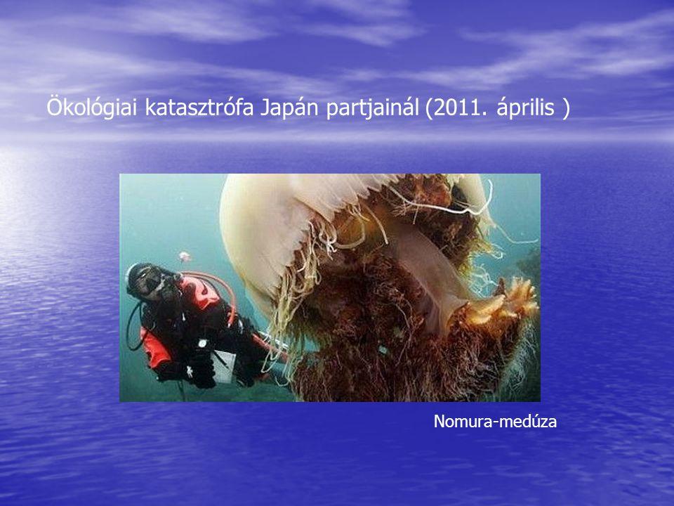Ökológiai katasztrófa Japán partjainál (2011. április )