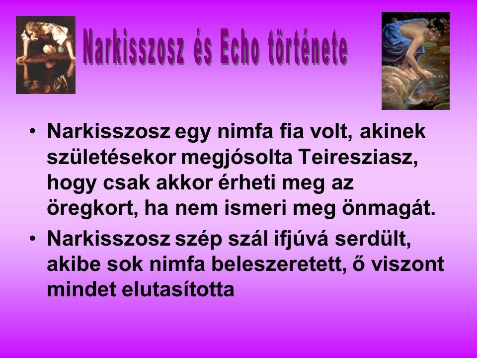 Narkisszosz és Echo története