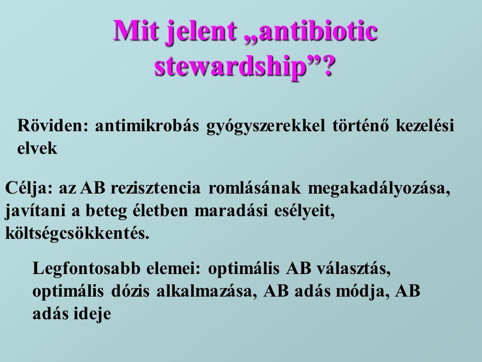 """Mit jelent """"antibiotic stewardship"""
