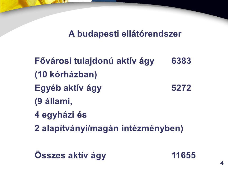 A budapesti ellátórendszer