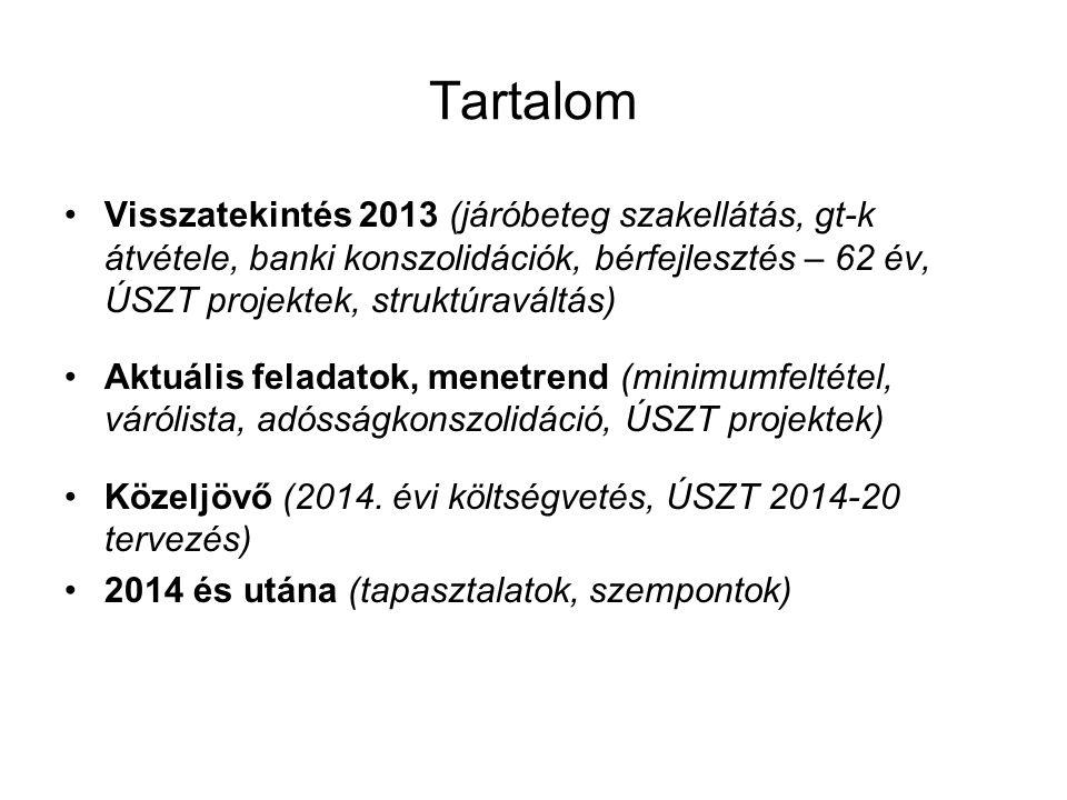 Tartalom Visszatekintés 2013 (járóbeteg szakellátás, gt-k átvétele, banki konszolidációk, bérfejlesztés – 62 év, ÚSZT projektek, struktúraváltás)