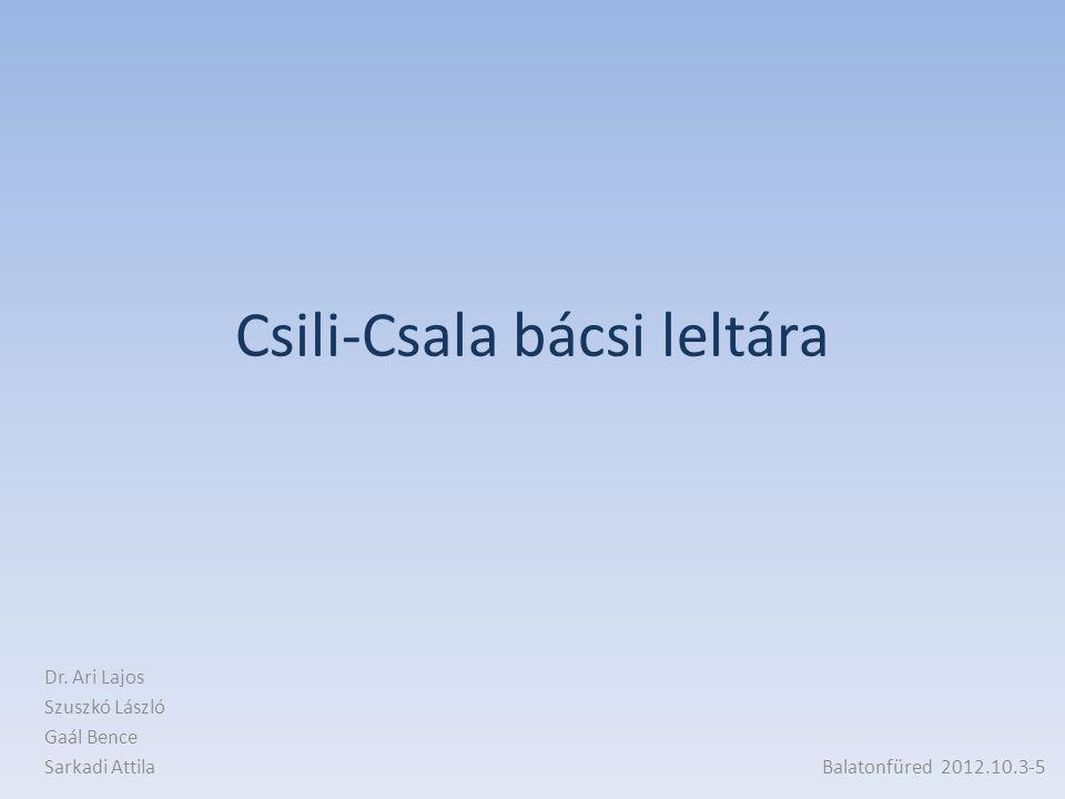 Csili-Csala bácsi leltára