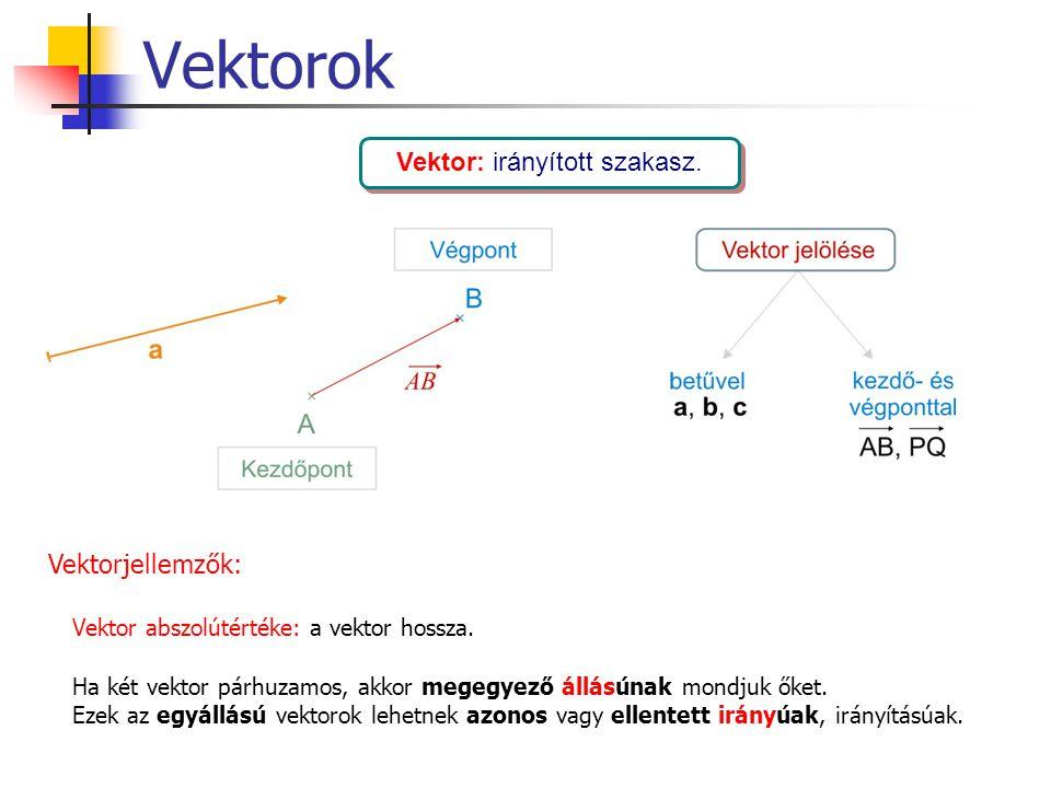 Vektor: irányított szakasz.