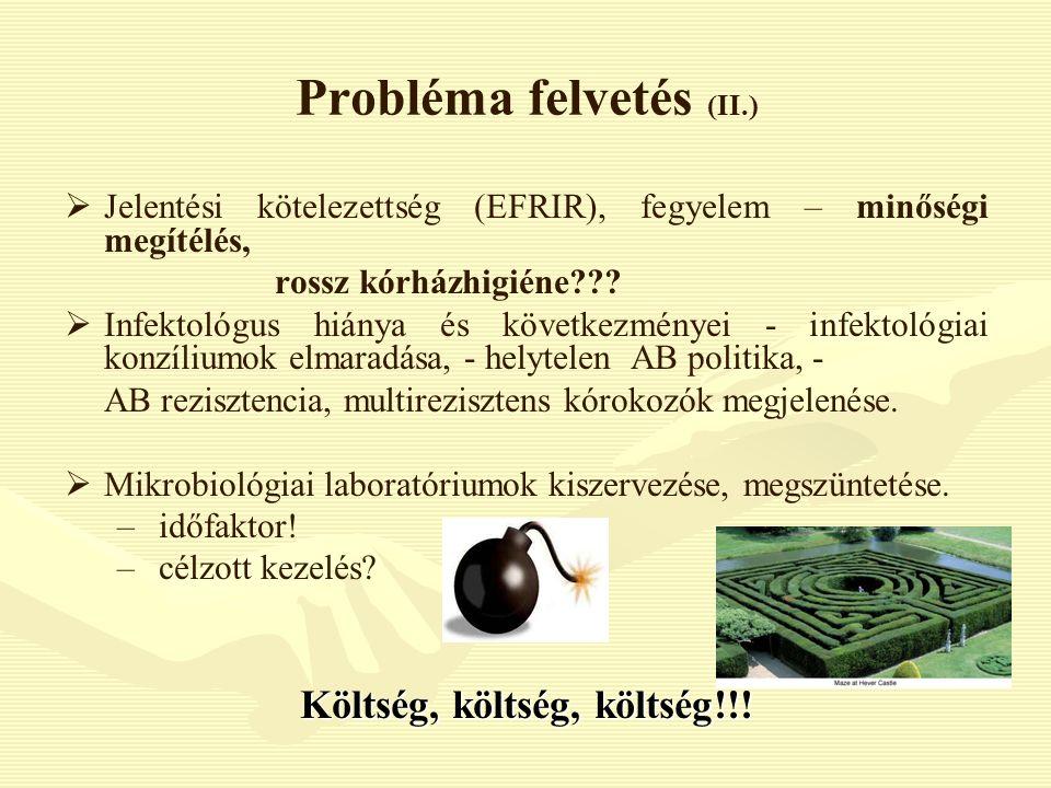 Probléma felvetés (II.)