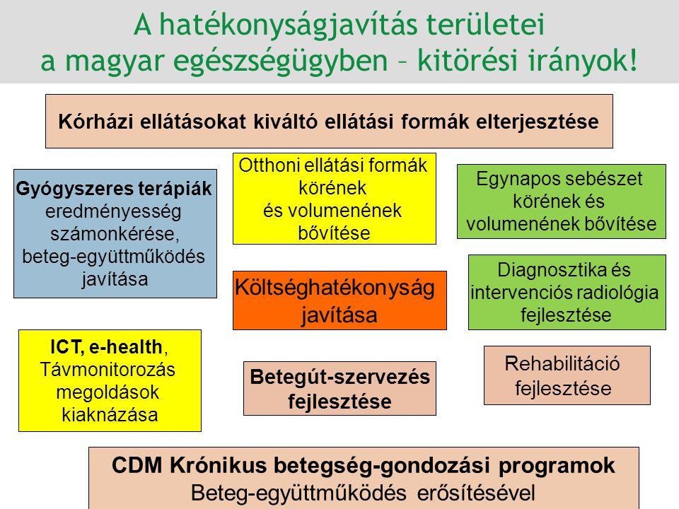 A hatékonyságjavítás területei a magyar egészségügyben – kitörési irányok!