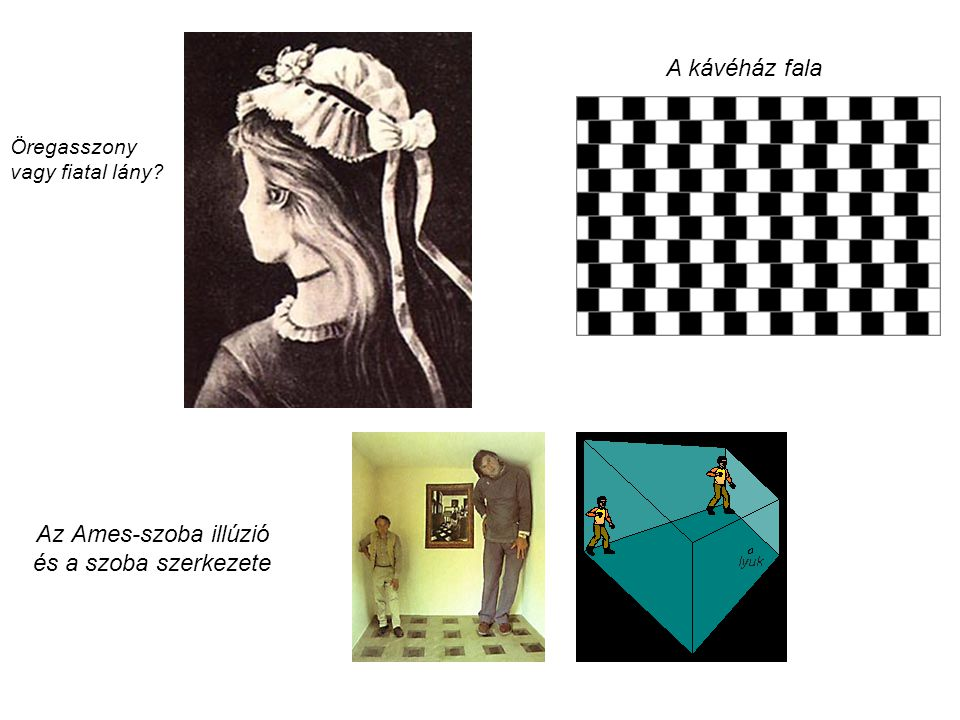 Az Ames-szoba illúzió és a szoba szerkezete